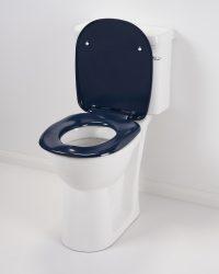 Toilet Blue lid up